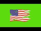 Bandeira dos Estados Unidos #1 - United States Flag #1 [Fundo Verde - Green Screen]