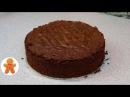 Шоколадный Бисквит Перфект ✧ Школа Домашнего Кондитера ✧ Chocolate Sponge Cake (English Subtitles)