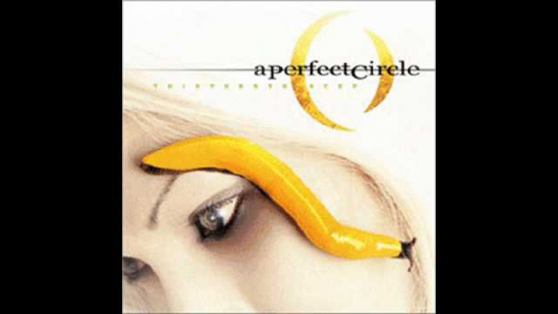 09. The nurse who loved me - A Perfect Circle