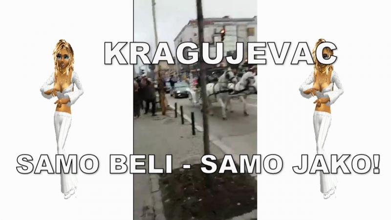 KRAGUJEVAC - BELI - SAMO JAKO!