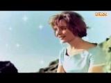 Песня о нежности (Мария Кодряну)