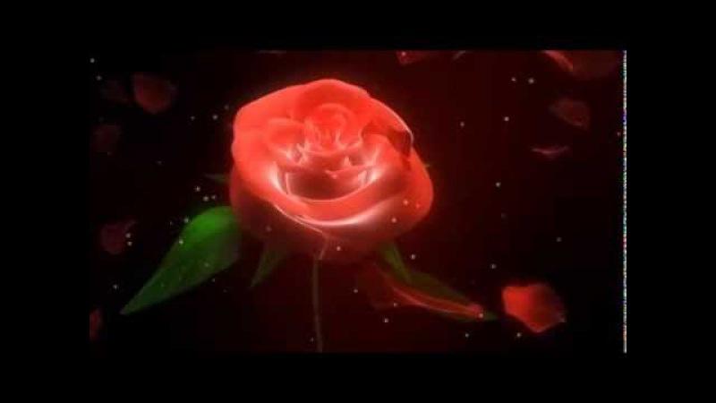 Romantic Avenue-Straniero (Video Mix 2013)