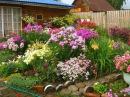 Как разбить красивый цветник Цветочный ландшафтный дизайн