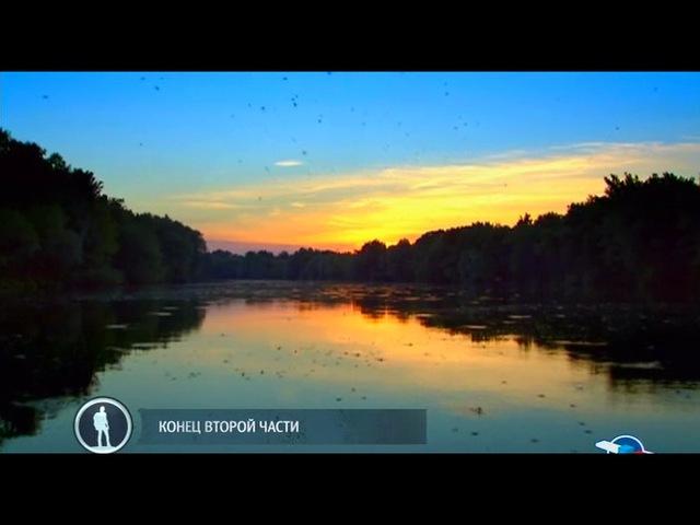 BBC: Как создавалась планета Земля: Эпоха цветов / 2 серия