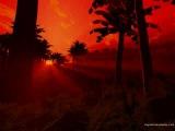 Tenishia - Burning From The Inside (Tenishia Burnout Mix)