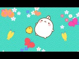 Molang - The Butterfly  Cartoon for kids