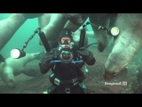 Scuba diving with sea lions at Vivian Island &amp Hornby Island, British Columbia!
