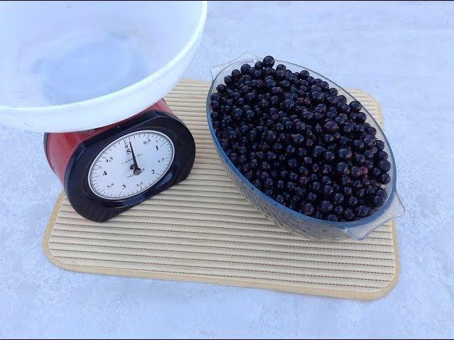 85.Смородина протертая с сахаром на зиму, которая не забродит