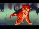 Коты воители Бич и Огнезвезд Совместная Работа с Belogrivka and Blue star