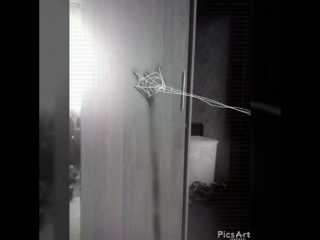 чп паутина 3D art