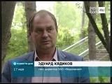 ТНТ-Поиск: Брачные игры лебедей в Майданово