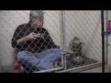 Vet Eats Breakfast While Sitting in Cage To Keep Rescued Pit Bull Company