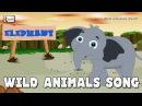 Wild Animals Song Zoo animals for children elearnin