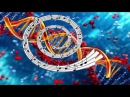 Активация ДНК 1-й Уровень ч.2 Целительная музыка Крайона