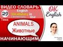 Тема 29 Animals - Животные 📕Английский словарь для начинающих | OK English