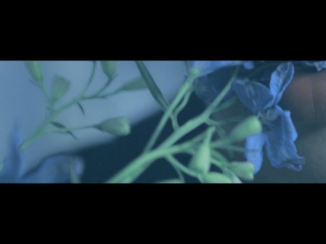 [Narration Teaser] OATH OF SHOWNU - MONSTA X 몬스타엑스 걸어 (ALL IN)