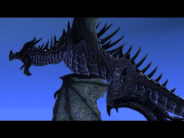 WOW I SURE DO LOVEEE SKYRIM DRAGONS GOD DAMN! (60fps)