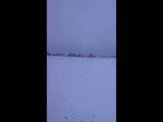 Снегоход - рысь vs животное - лиса.
