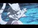 Mega Charizard X vs Mewtwo [Full Fight, HD]