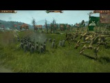 Total War: Warhammer — Realm of the Wood Elves — 8 минут геймплея