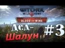 The Witcher 3 Blood and Wine 3 - Дед-шалун