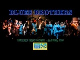 Blues Brothers Judy Belushi Patxi Pastor All Star Band Miami Beach Concert 2008