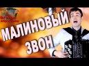 МАЛИНОВЫЙ ЗВОН под БАЯН - поет Вячеслав Абросимов
