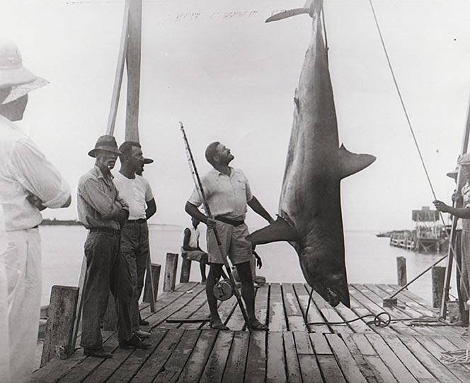 Хемингуэй на рыбалке