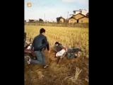 Едим в соседние село