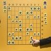 Встречи Питерского клуба японских шахмат (сёги)