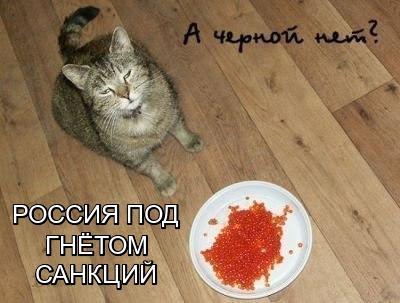 http://cs626324.vk.me/v626324986/1e36c/e2L2FC8xdPY.jpg