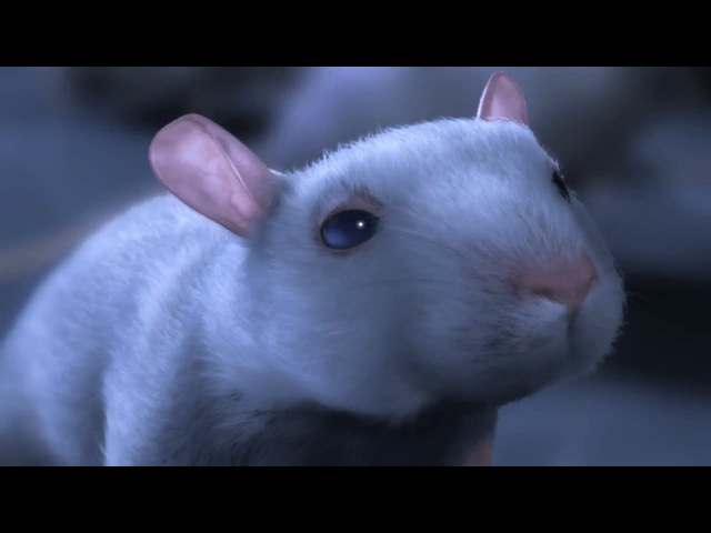 CGI 3D Animated Short HD One Rat by CHRLX and Alex Weil | CGMeetup