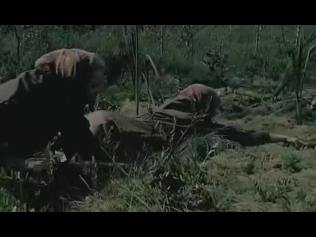 Граница: Таежный роман - Альбина и болото (Р.Литвинова)