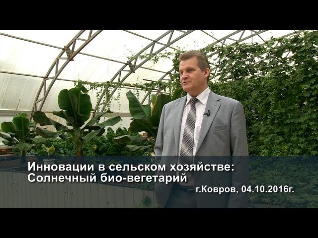 Инновации в сельском хозяйстве: Солнечный био-вегетарий