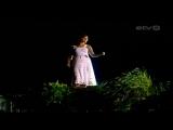 Бируте Петриките - Желтоглазая ночь