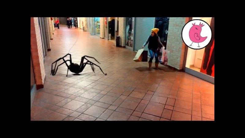 ★ ГИГАНТСКИЙ ПАУК НАПАЛ НА ДЕВОЧКУ В ТОРГОВОМ ЦЕНТРЕ Giant Spider Attacks Girl in the Mall