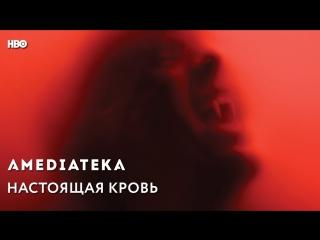 Настоящая Кровь | True Blood | Говорят Герои