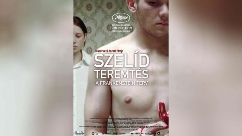 Любящий сын Франкенштейн (2010) | Szel
