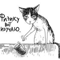Дина Василова