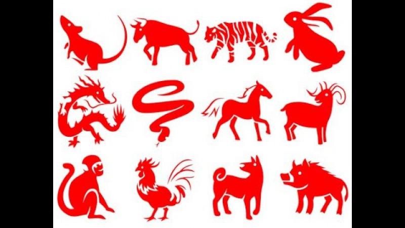 Презентация цикла гороскопов по восточному китайскому календарю