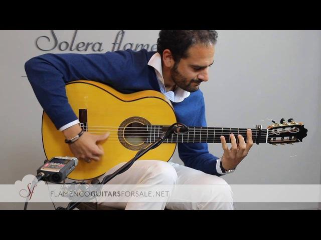 DIEGO DEL MORAO Pago de la Serrana, seguiriyas en Solera Flamenca