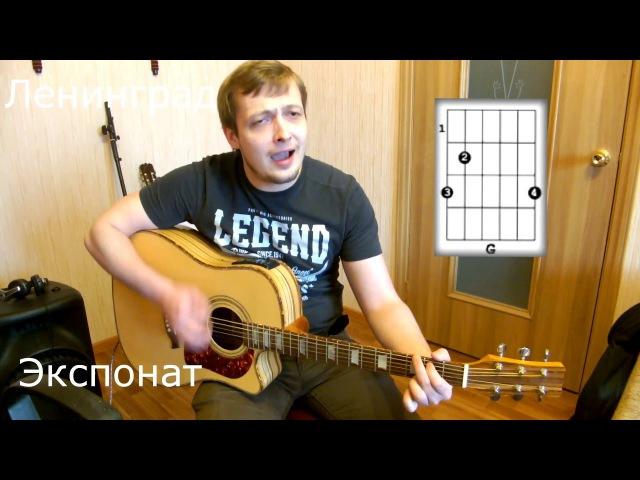 Как играть ЛЕНИНГРАД - Экспонат (на Лабутенах) на гитаре.Аккорды. Полный разбор. В...