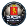 Федерация киберфутбола Красноярска | FIFA 17