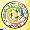 Студенческая мини-футбольная лига г. Ярославля
