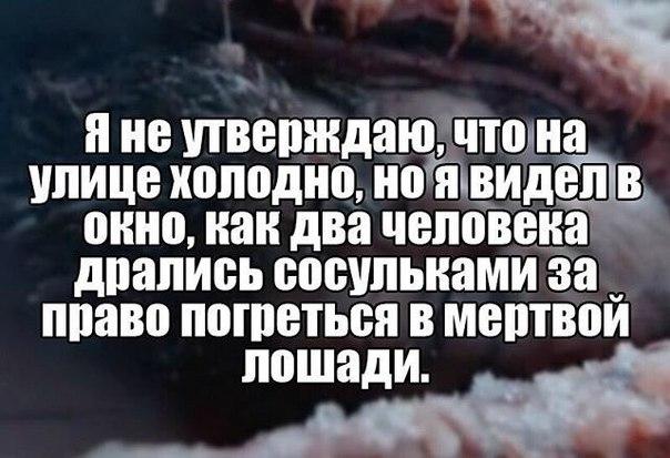 фото из альбома Аллы Булгаковой №11