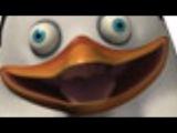 Хайлайты Мадагаскар - Пингвин Первый
