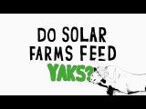 Earth Day 2017 —Do solar farms feed yaks? — Apple