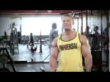 Universal Nutrition Supplements &amp Info at Bodybuilding.com .