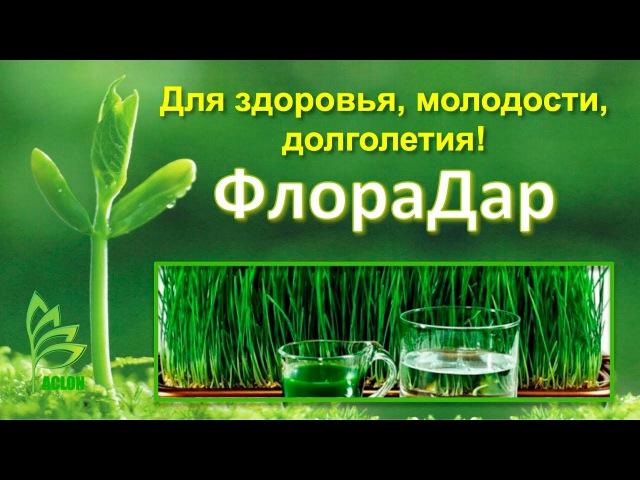 ACLON ФлораДар- пищевой продукт О. Меньшикова 10.03.2017