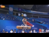 ЧМ 2011. Индивидуальное многоборье. Кодзи Ямамуро - конь